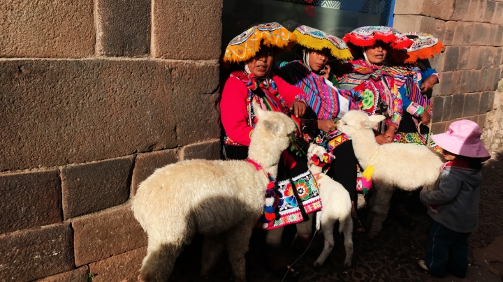 Traditional medicine, Organic Farming and Incas in Cusco. (Part8)